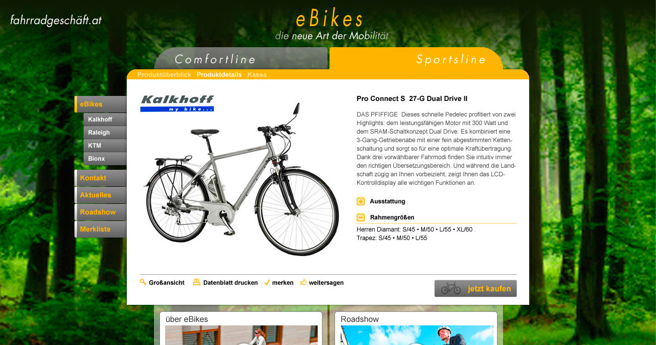 ebikes-shop-bike
