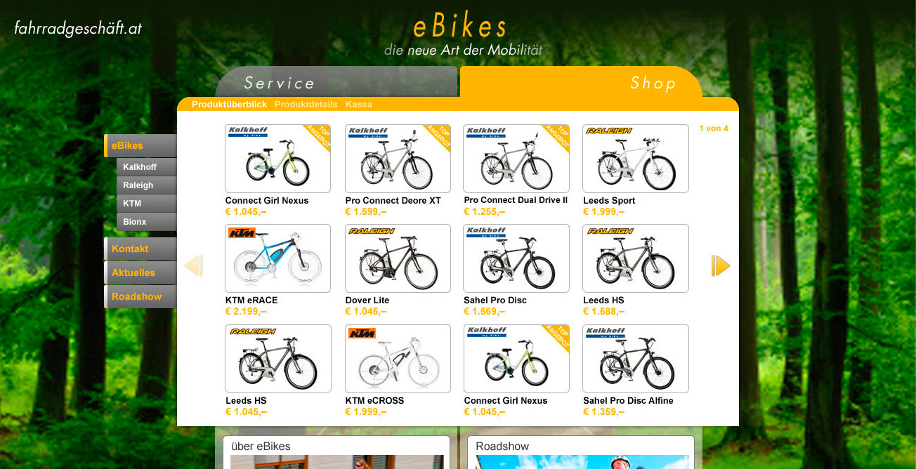 ebikes-shop-overview